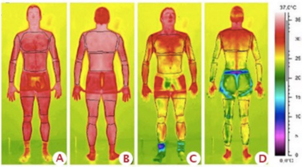 NITROGEN BODY HEAT MAP.png