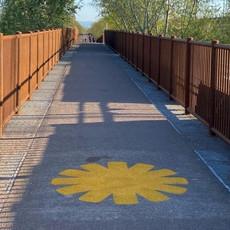 Ciclovia_ponte.jpeg