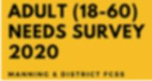 Adult Survey 2020.PNG