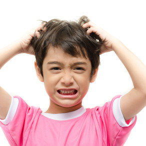 Head Lice: Creepy, Crawly, Itchy, Yuck!