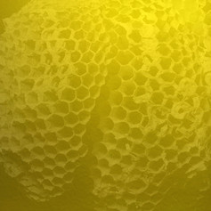 9 Square Hive 3 - Ink + Photo CGI