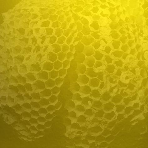 9 Square Hive 3 - Ink + Photo CGI