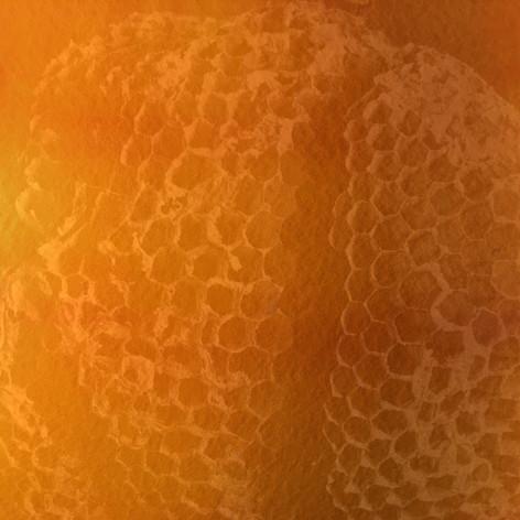 9 Square Hive 1 - Ink + Photo CGI