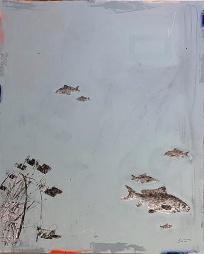 Shafer Lake pt.1