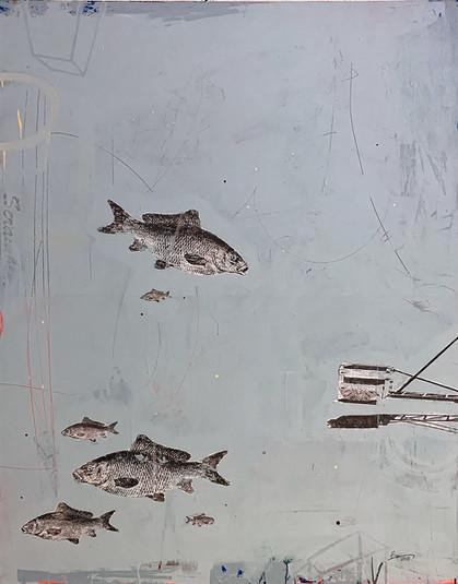 Shafer Lake pt.3