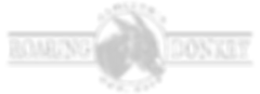 white-top-logo.png