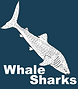 Sea Kayak Travel - Whale Shark Icon.png