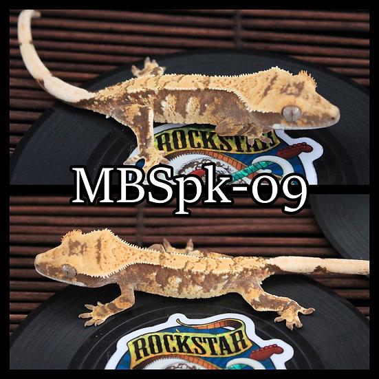 MBSpk-09