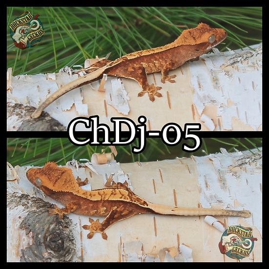 ChDj-05