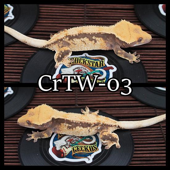 CrTW-03
