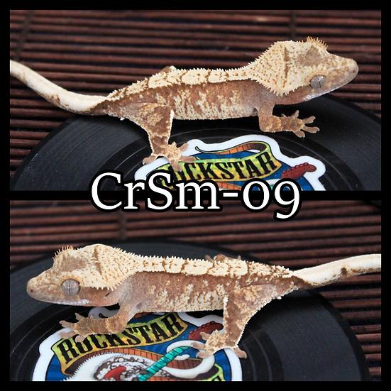 CrSm-09