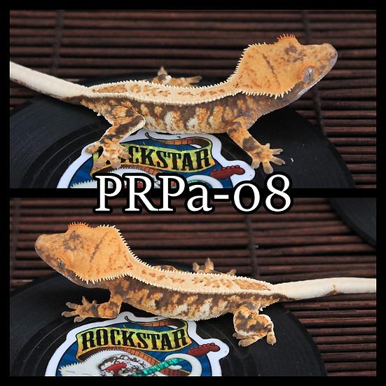 PRPa-08