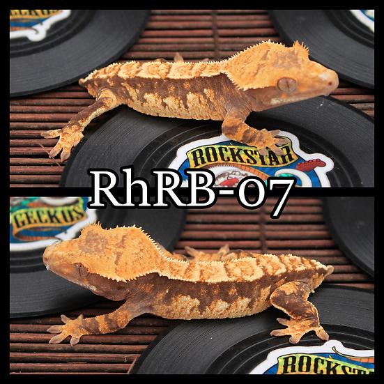 RhRB-07