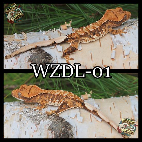 WZDL-01