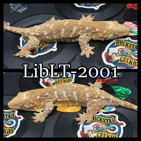 LibLt-2001