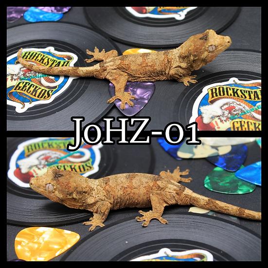 JoHZ-01