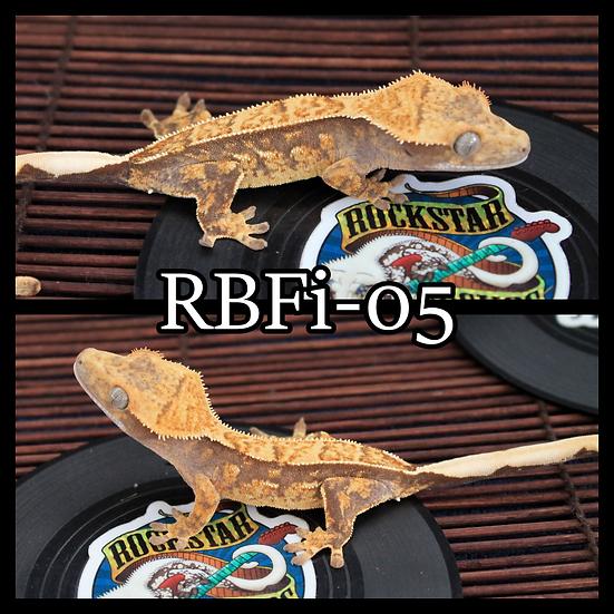 RBFi-05