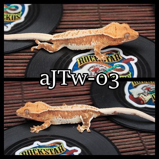 aJTw-03