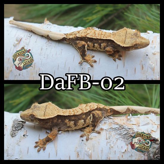 DaFB-02