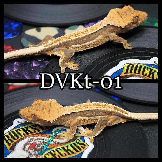 DVKt-01