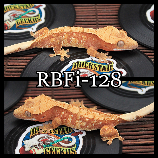 RBFi-128