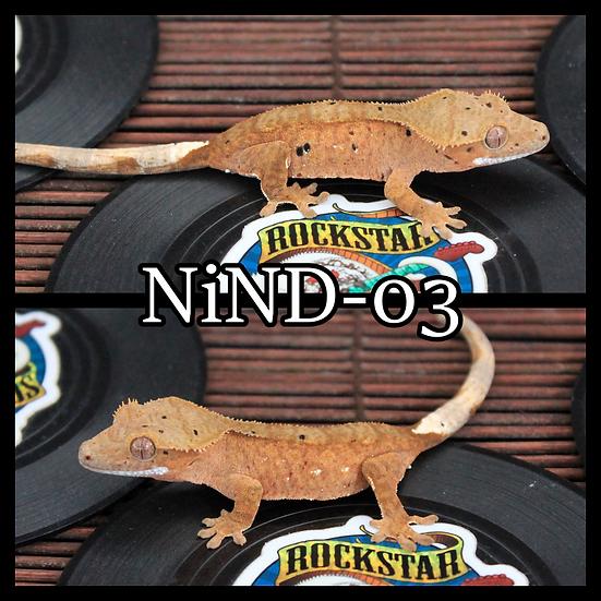 NiND-03