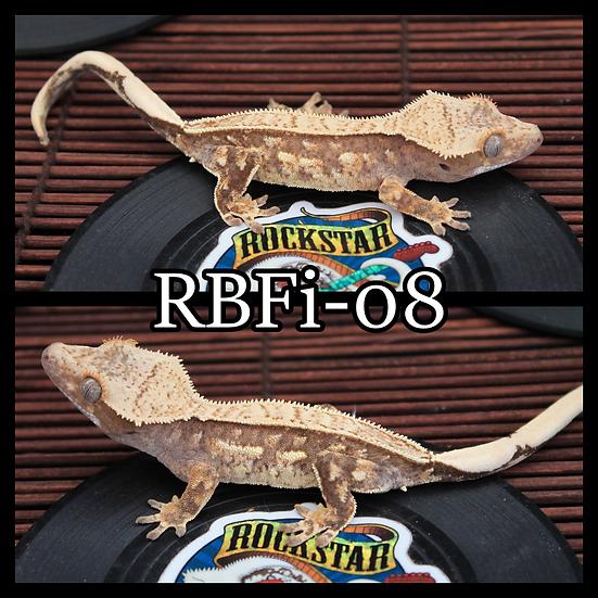 RBFi-08