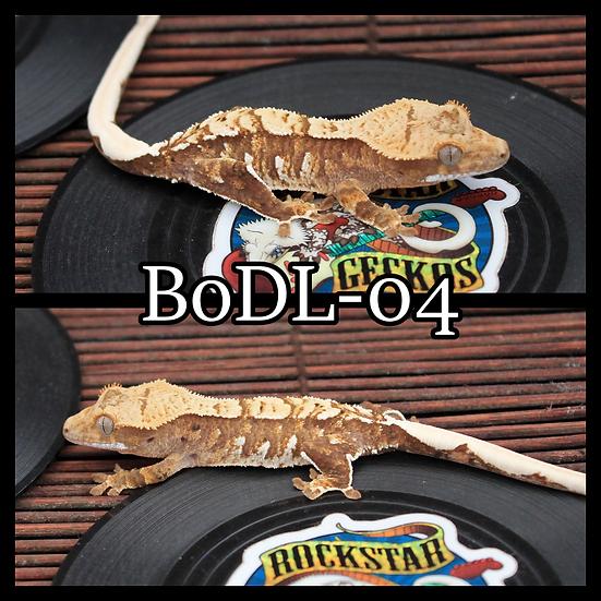BoDL-04