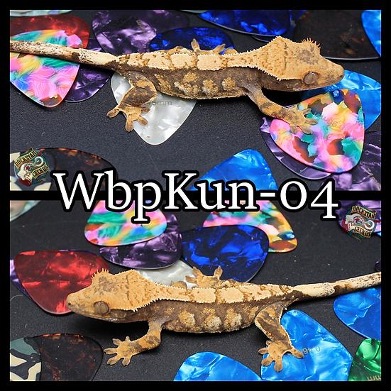 WbpKun-04