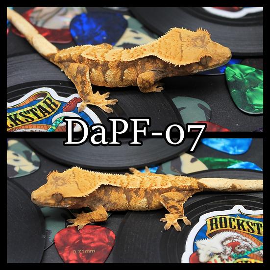DaPF-07