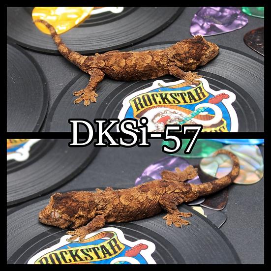 DkSi-57