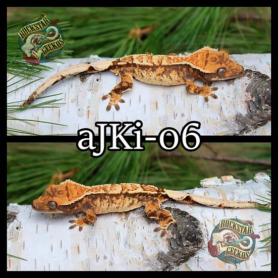 aJKi-06