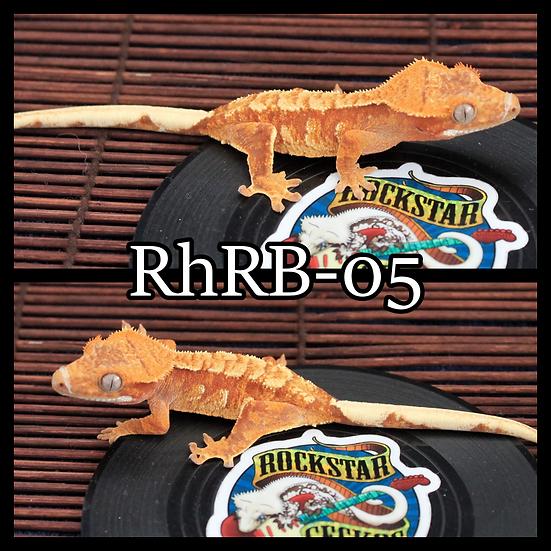 RhRB-05