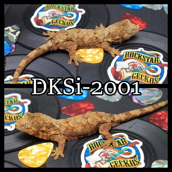 DKSi-2001