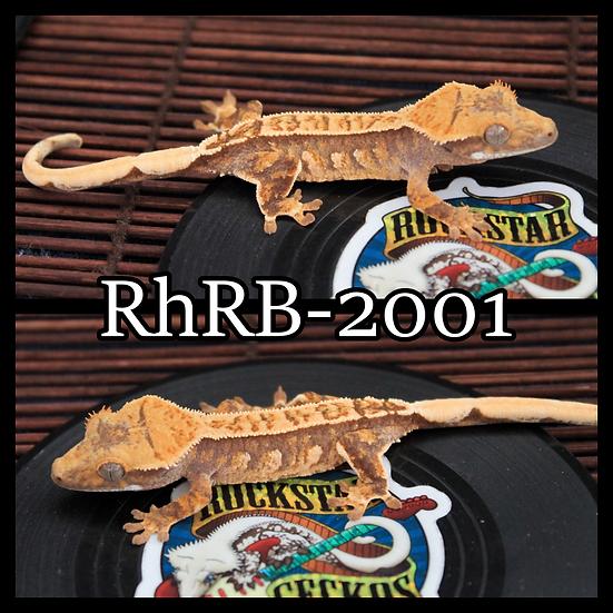 RhRB-2001