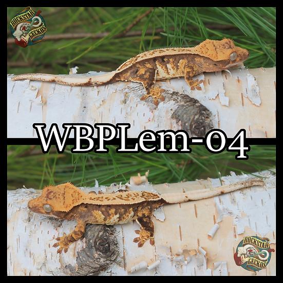 WBPLem-04