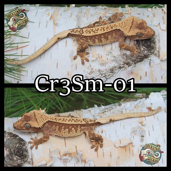 Cr3Sm-01