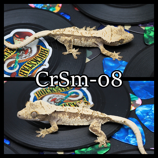 CrSm-08