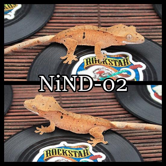 NiND-02