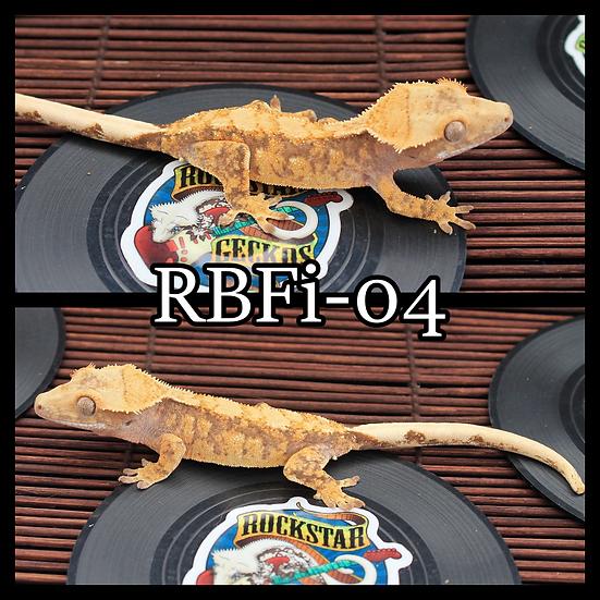 RBFi-04