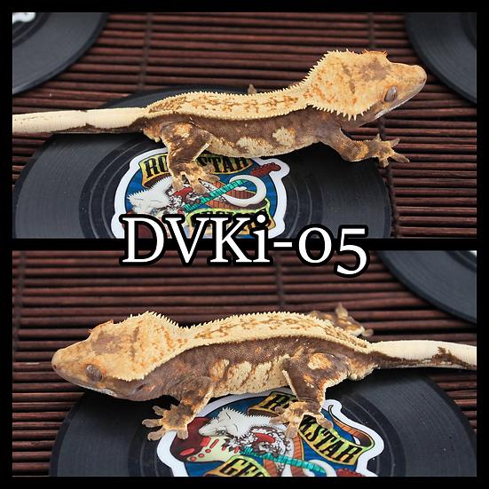 DVKi-05