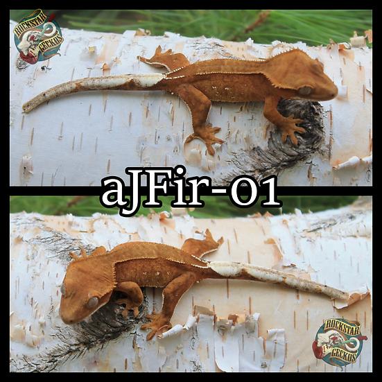 aJFir-01