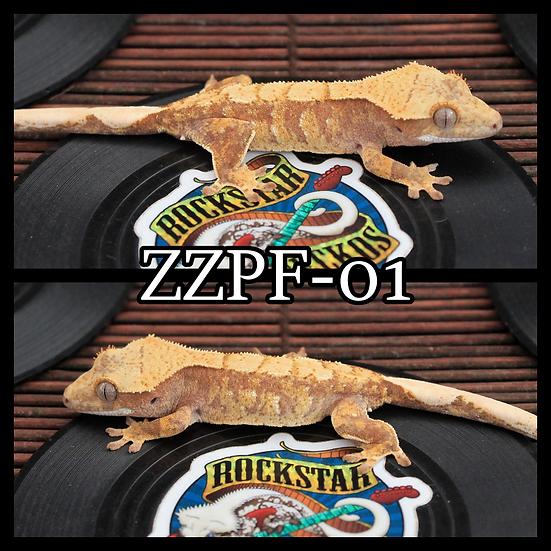 ZZPF-01