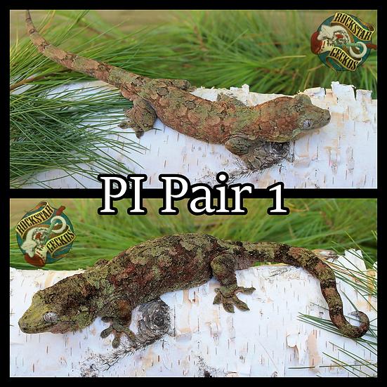 PI Pair 1