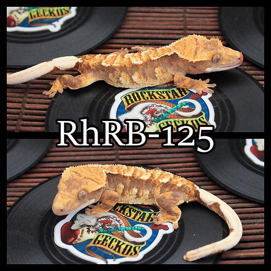 RhRB-125