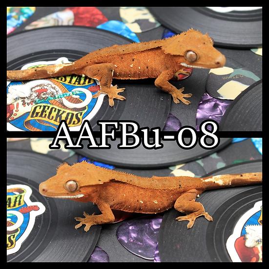 AAFBu-08