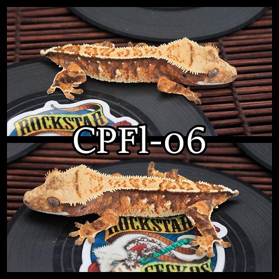 CPFl-06