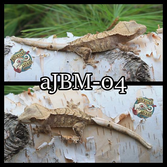 aJBM-04