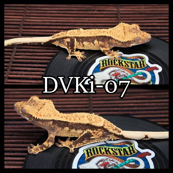 DVKi-07