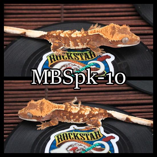 MBSpk-10